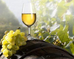 сухое итальянское вино